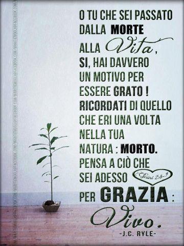 vivo_per_grazia